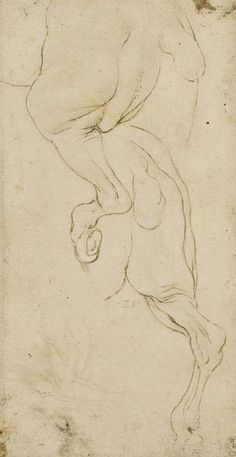 The hind-quarters of a horse Leonardo da Vinci (Vinci 1452-Amboise 1519) #TuscanyAgriturismoGiratola