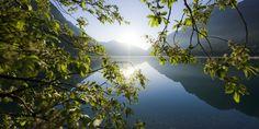 Startseite - Plansee Tirol - natur erleben