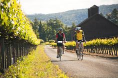 Pedal your way through Napa and Sonoma counties, visiting vineyards, redwood groves and the Northern California coast during a weeklong wine country bike tour with Backroads.
