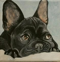 15x15 cm acrylic painting French bulldog
