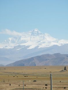 Mt. Everest - I dont want to climb it. I just want to see it in person & have my picture taken at the base
