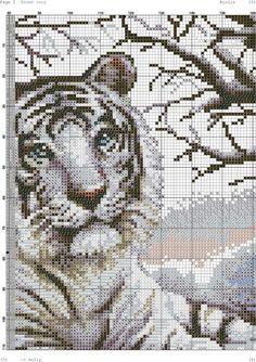 Белый тигр-002