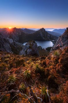 Stars of Oberon by Dylan Toh & Marianne Lim on 500px