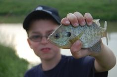 Fishing ~ best thing to teach and share with a son.