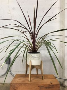 Mid-Century Inspired Home Decor Large Plant Stand