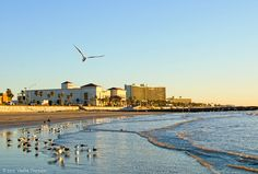 The Galveston Island Convention Center at The San Luis Resort is conveniently located 40 miles south from Houston