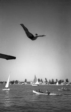 Julius Shulman  TITLE: Self-Portrait diving into Newport Bay  DATE: c. 1935