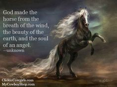 God made the horse from the breath of the wind, the beauty of the earth, and the soul of an angel. —unknown