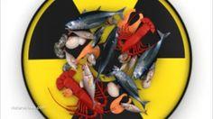 Japan Asks Globalist Trade Organization (WTO) to Force South Koreans to Eat Radioactive Fukushima Food