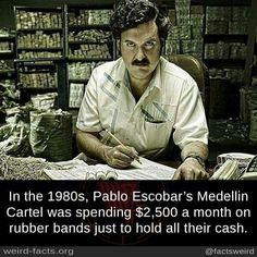 Weird Facts