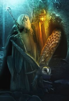 wizards and owls | Wizard by *LiliaOsipova on deviantART