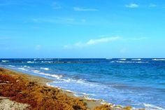 Exploring the Beach Shacks of St. Kitts