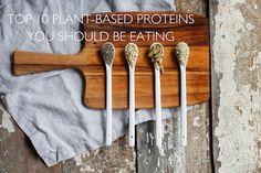 Top Ten auf pflanzlicher Basis Proteine Sie essen sollten Nutrition Stripped