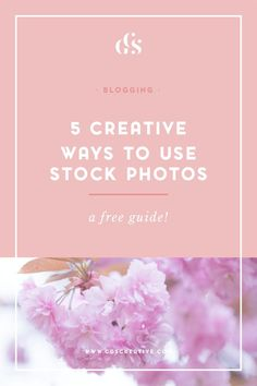 5 Creative Ways to use Stock Photos to ensure your brand shines online! A FREE…