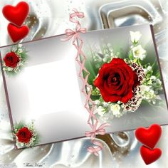 Create your own photo montage rose on Pixiz. Birthday Girl Dp, Birthday Wishes In Heaven, Birthday Frames, Photo Background Images Hd, Frame Background, Picture Borders, Foto Frame, Book And Frame, Beautiful Love Pictures
