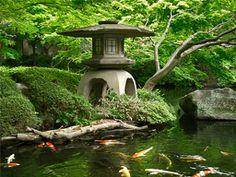 estanque de agua estilo japonés