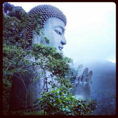 佛 buddha