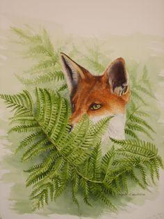 :fox art