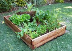 At Home At Home: Vegetable Garden