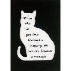 when the cat you love becomes a memory, the memory becomes a treasure.