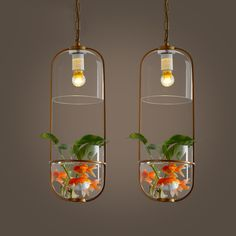 Cheap plant lighting hydro, Buy Quality light longboard directly from China plants in a bag Suppliers: Retro living room creative individuality clothing store cafe bar, wrought iron glass shade pendant lightUSD 245.00/piece