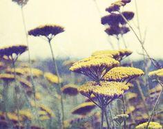 Indian summer:  http://www.etsy.com/listing/55451577/indian-summer-art-photography-botanical