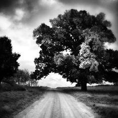 It's a long long road.  . .