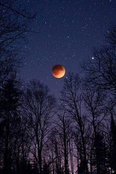""" Total Lunar Eclipse by Benjamin Tatrow """
