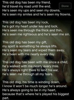 This is beautiful. To old the old dogs who have spent their life with me Schnauzers, I Love Dogs, Puppy Love, Pet Poems, Pet Loss Grief, Animal Quotes, Pet Quotes, Animal Poems, Puppy Quotes