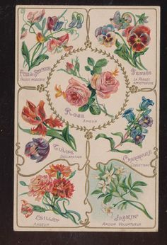 Beautiful Antique French Postcard- The Language & Meaning of Flowers Rose-bbb452