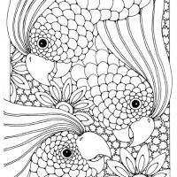 100 Ideas 5th Grade Coloring Pages On Gerardmann Com