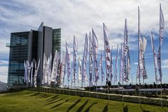 https://flic.kr/p/zkRRhs | Flags Waving in the Wind | At the Riverfest Regatta in Oklahoma City.