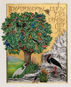 """""""I found a fruitful world because my ancestors planted it for me. So, too, will I plant for my children."""" (Babylonian Talmud, Ta'anit 23a). Barbara Wolff ~ Psalm 104"""