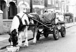 Horse and cart in Olive Road, 1983 (although I find the date a little hard to believe!)  Via Brent Museum website... sorry I can't figure out how to link directly to it