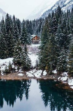 House Lake Forest Middle 50 Ideas For 2019 Beautiful World, Beautiful Places, Beautiful Pictures, Places To Travel, Places To Go, Travel Destinations, Winter Cabin, Cozy Cabin, Winter Scenery