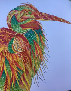 Stork from Millie Marotta Tropical Wonderland, coloured in primsacolour, bold and beautiful!