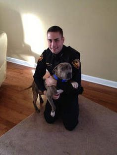 A misunderstood pit bull, now aptly named Shield, owes his life to an Aurora police officer with the equally appropriate name — Officer Christopher Grandchamp. This warm and fuzzy dog tale begins Feb. 8, when the 23-year-old rookie cop was working the night shift and