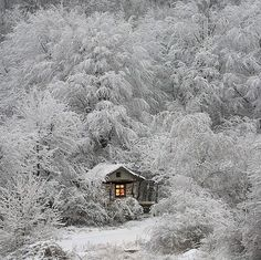 Fairy House in Winter  http://1x.com
