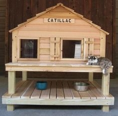 25+ Best Ideas about Outdoor Cat Houses on Pinterest ...