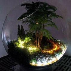 Kendi Botanik Bahçenizi Oluşturun : Teraryum Modelleri ve Bakımı - #: #Bahçenizi #Bakımı #Botanik #kendi #modelleri #Oluşturun #teraryum #ve