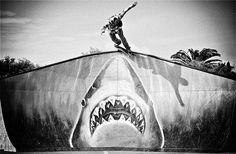 Jaws vs Skater
