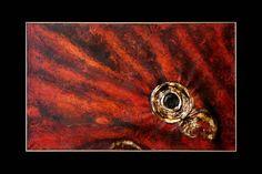 Sandra Marcelloni l'artista che crea sculture su tela, l'arte contemporanea ha nuovi risvolti. Visita il sito www.sandramarcelloni.it conttattaci per info