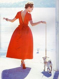#red #fashion #dress #dog #inspiration