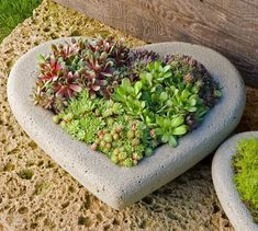 Create a unique centerpiece on your patio table with the Heart Large Planter, part of our Garden Planters Collection. Gnome Garden, Herb Garden, Green Garden, Garden Art, Organic Gardening, Gardening Tips, Vegetable Gardening, Harvest Basket, Unique Centerpieces