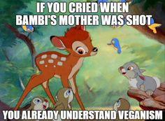 Vegan Compassion #vegan