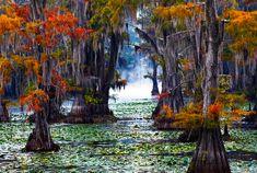 lago texas