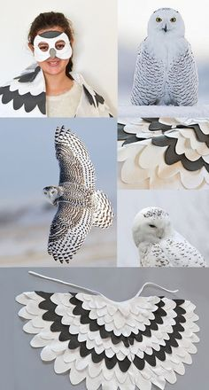Hedwig, Harry Potters Snowy Owl - Costume |BHB Kidstyle
