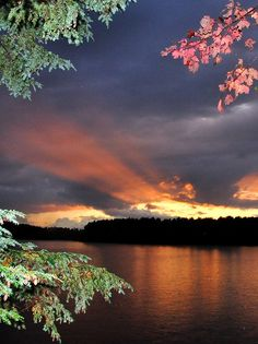 Maine fall foliage - Sunset in Princeton, New Jersey   I know exactly where this was taken :)