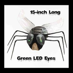 Big Realistic Creepy Jumbo Size GIANT TEXAS HOUSE FLY with Spooky Green LED Lighted Eyes Scary Bug Gothic Halloween Haunted House Cemetery Graveyard Mad Scientist Laboratory Horror Movie Display Prop Building Joke Gag-Cheap Halloween Prop Decoration - http://www.horror-hall.com/Creepy-Bug-GIANT-TEXAS-HOUSE-FLY-Green-Light-Up-Eyes-Horror-Prop-HH-FM-68461.htm