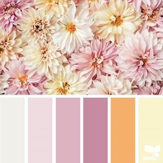 { flora hues } image via: The post Flora Hues appeared first on Design Seeds. Design Seeds, Warm Colour Palette, Warm Colors, Old Rose Color Palette, Pastel Palette, Pastel Colors, Bedroom Color Schemes, Bedroom Colors, Bedroom Ideas